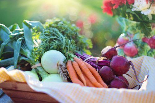 Запущен государственный реестр производителей органической продукции
